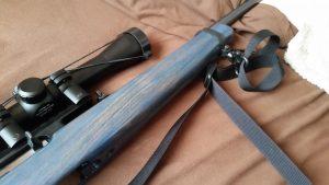 Blue ruger 10 22