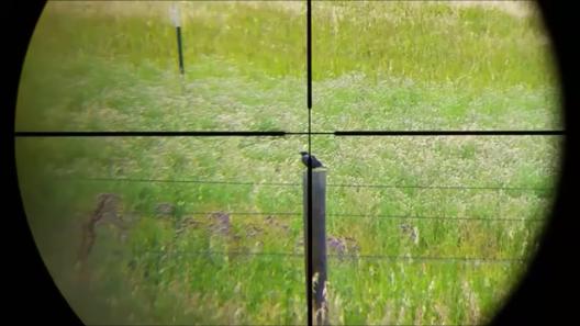Pest_Control_Preview