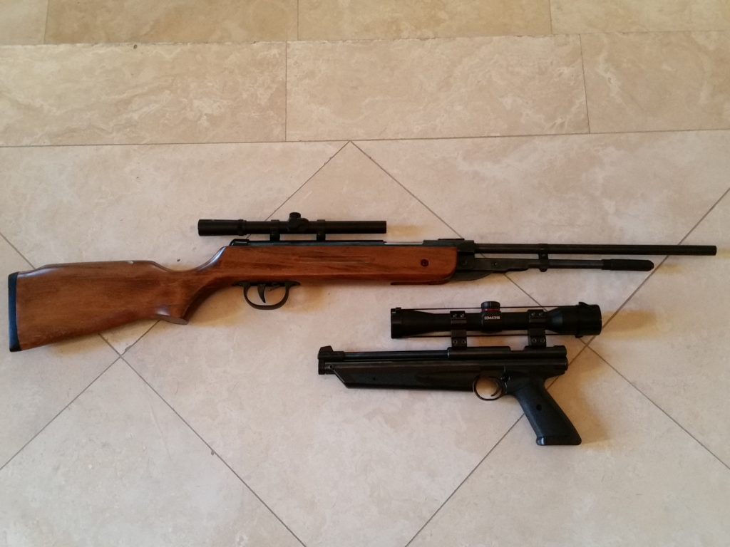 Chinese B3 vs Crosman 1322